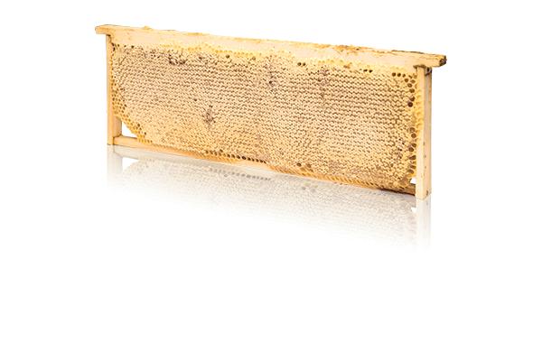 Сотовый мед в полурамке в кейсе 1.8 - 2.5 кг