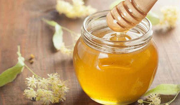 липовый мед и цветы липы